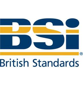 BSI-British-Standards-multi_RGB-1-300x173-1